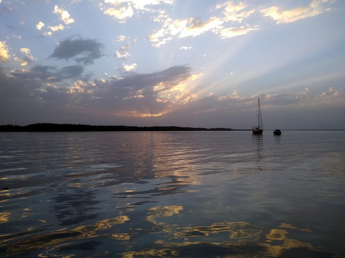 "Die ""aracanga"" auf dem Gambia River"