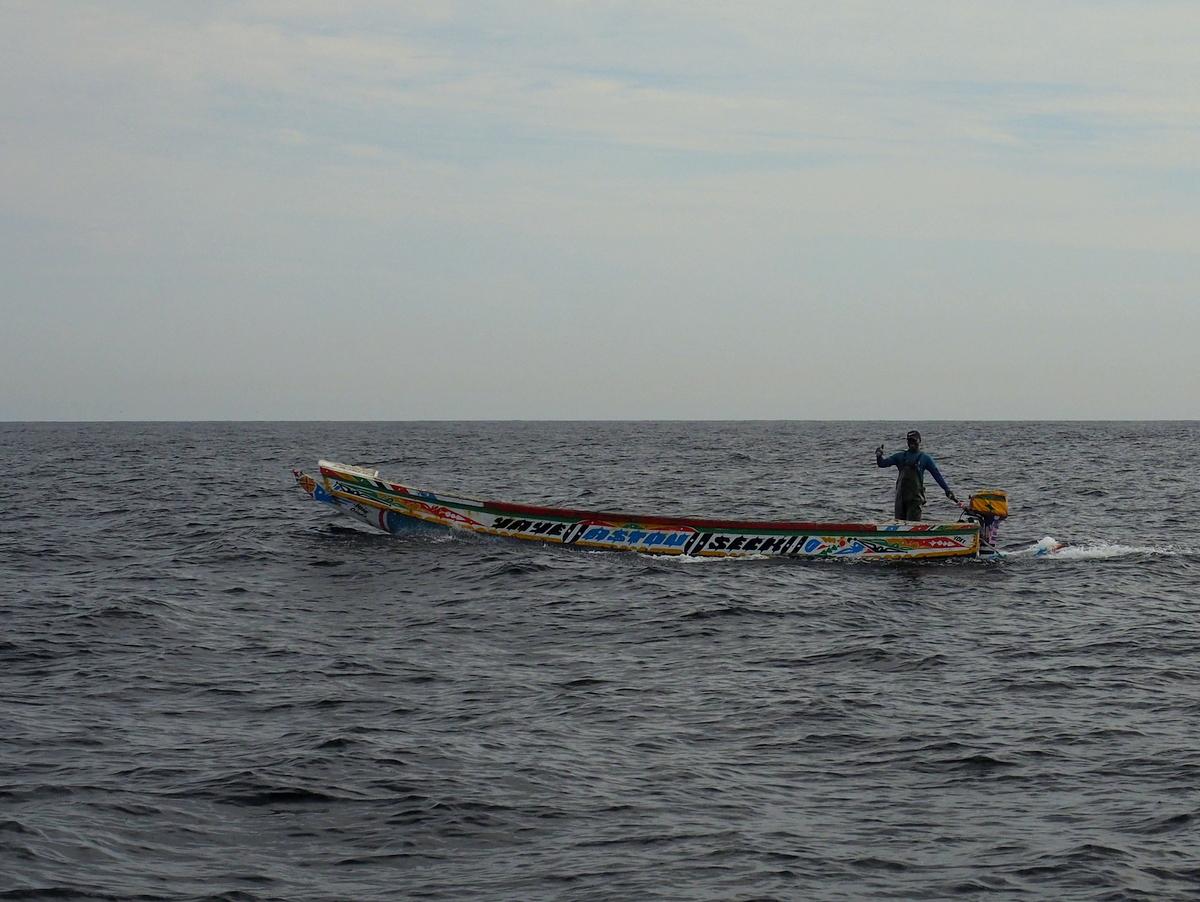 Schon weit vor der Küste werden wir von den Fischern begrüßt