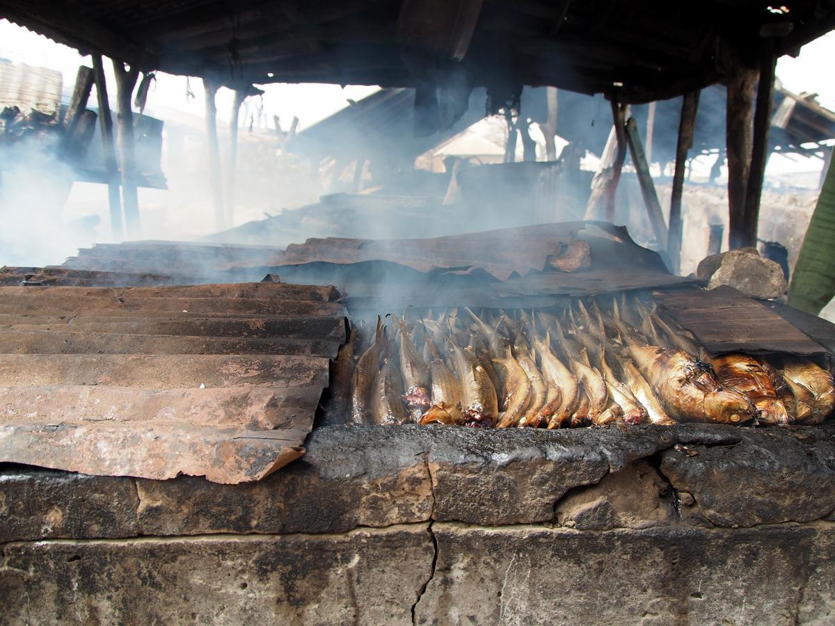 Fische im Räucherofen