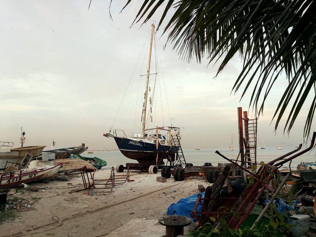 Der Streuner auf dem Strand von Dakar