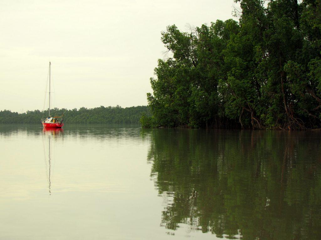 Gambia Erfahrungen - Die aracanga inmitten prächtiger natur