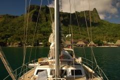 TahitiMoorea-1053