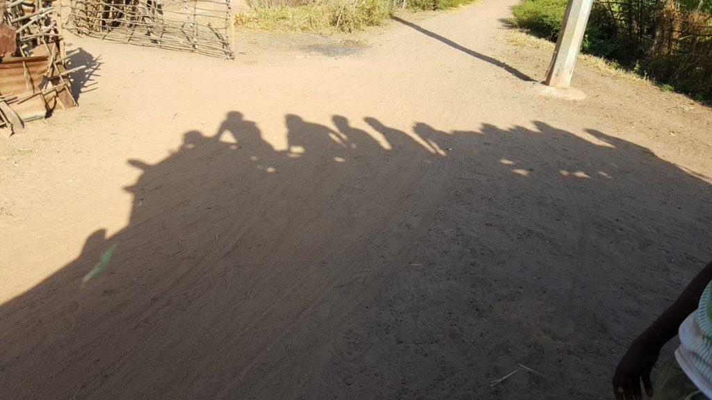 Schatten des Busses