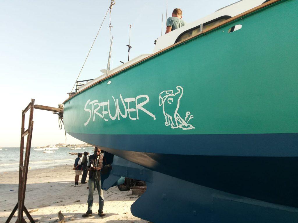 Der Streuner am Strand von Dakar