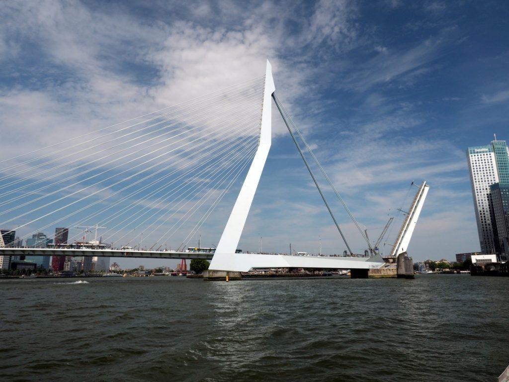 Die Erasmusbrücke ist ein Wahrzeichen Rotterdams